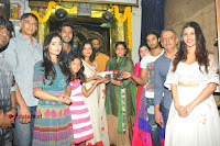Anandi Indira Production LLP Production no 1 Opening  0051.jpg