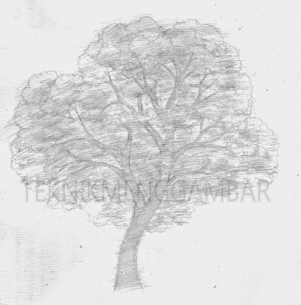 Teknik Menggambar Pohon