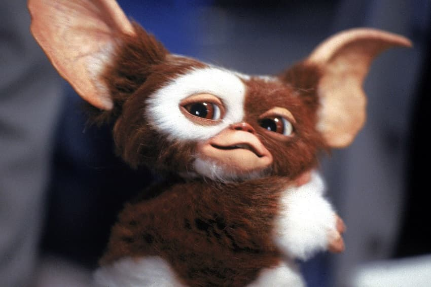 HBO Max продлил мультсериал Gremlins: Secrets of the Mogwai на второй сезон