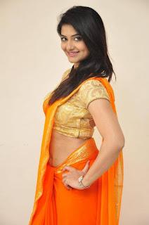 Actress Kashmira Kulkarni Stills in Saree at Drishya Kavyam Movie Success Meet  0011