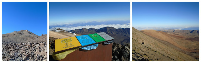 Up the top of El tiede - www.growourown.blogspot.com