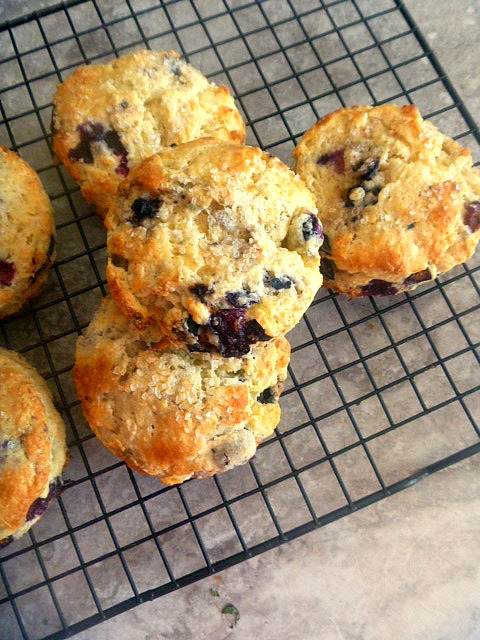 Lemon Blueberry Scones: Warm from the oven, these scones are tender and flaky.  One bite and a blueberry bursts into your mouth and you taste pure sunshine from the lemons.    Now that's a scone! - Slice of Southern