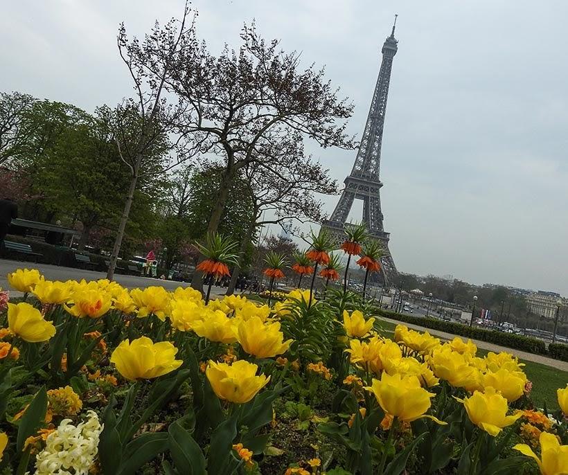 Torre Eiffel - Paris - Primeira vez na Europa e na África