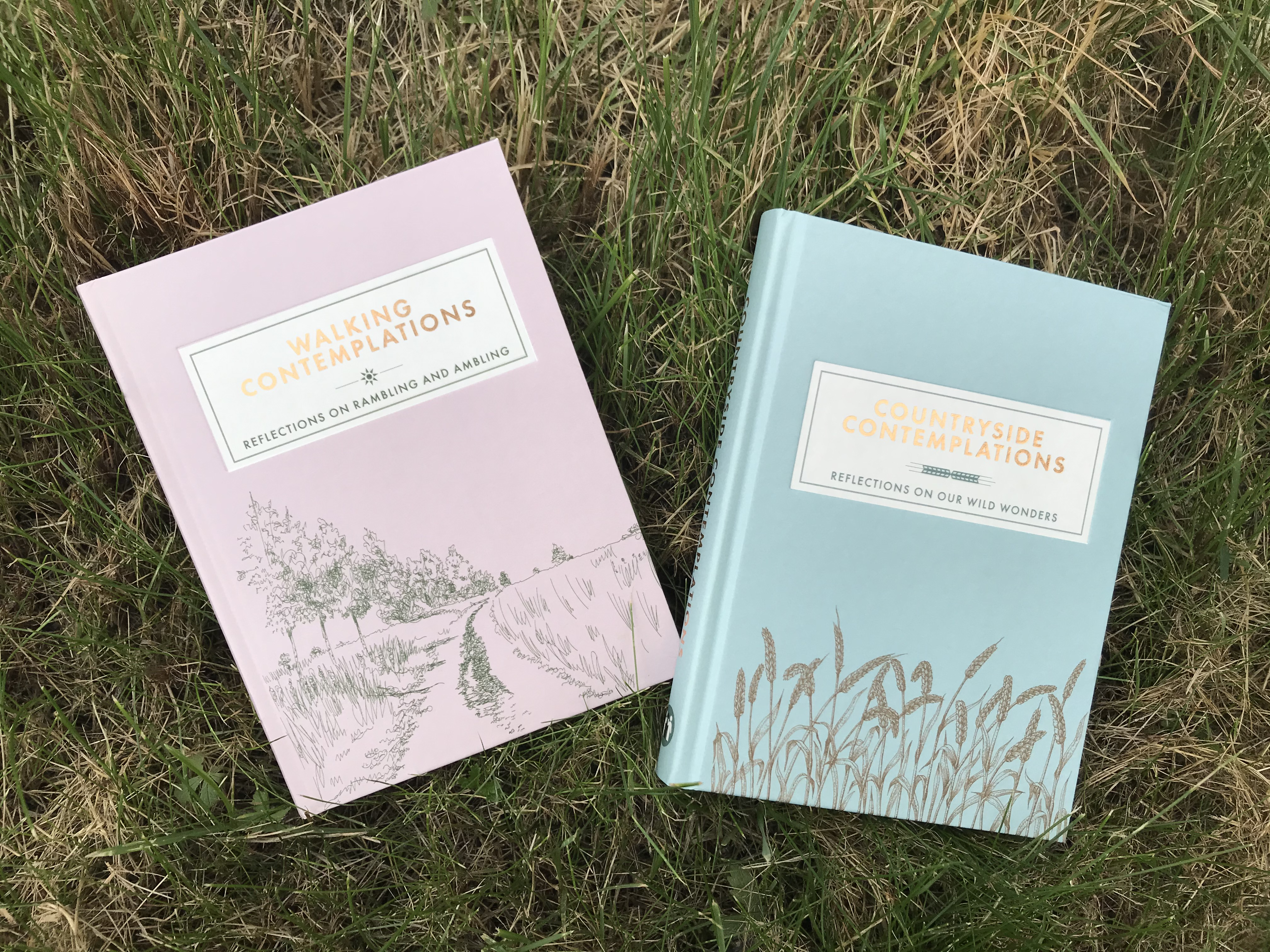 Countryside Contemplations Trigger Publishing