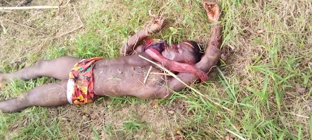 INSECURITY:  Over 18 persons has been killed by the Fulani Herdsmen in latest atack in Ebonyi, South East Nigeria