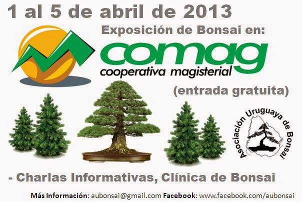 http://aubonsai.blogspot.com/2013/04/expo-abril-2013.html