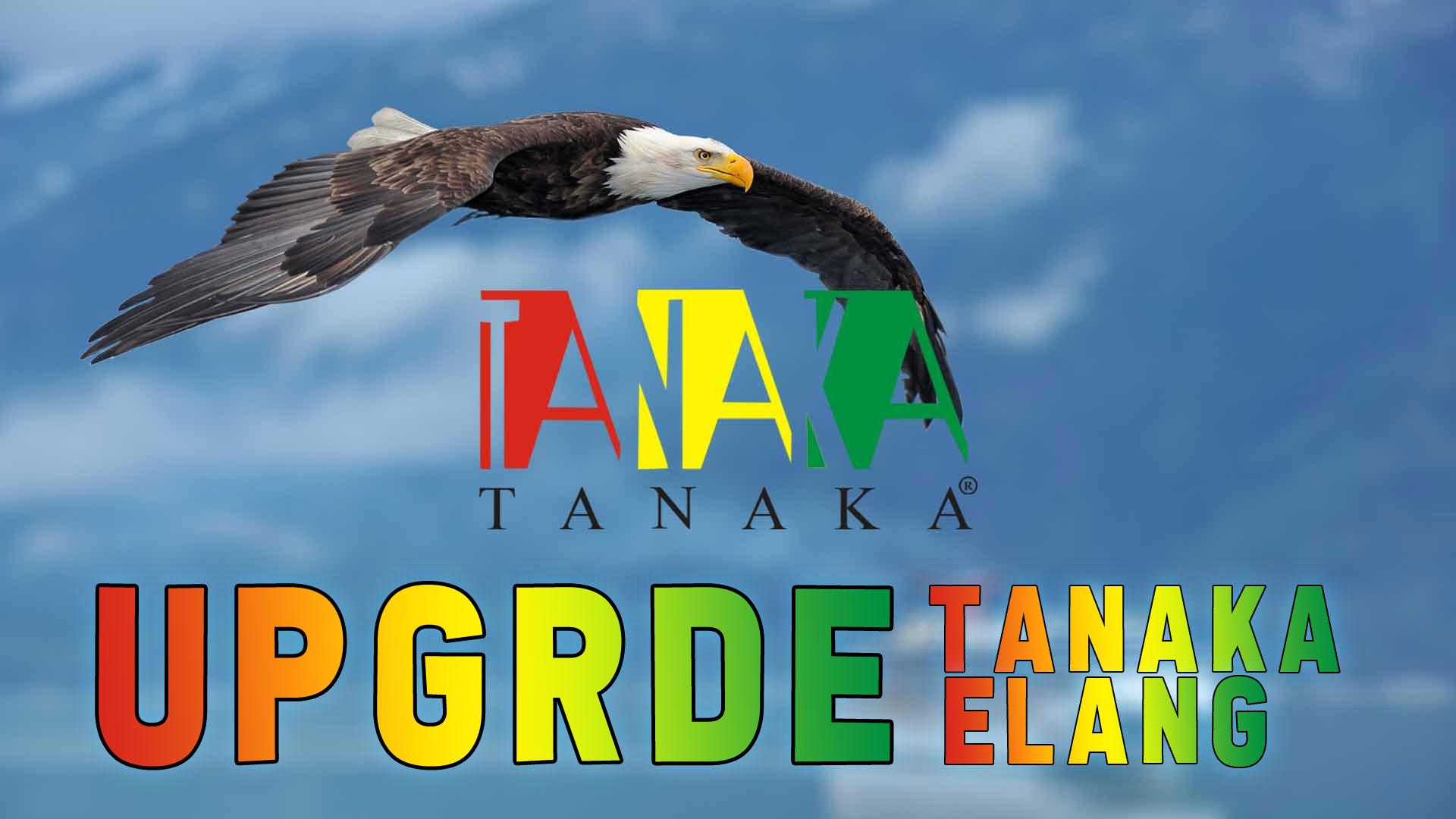 Cara Upgrade Firmware Receiver Tanaka T21 Elang HD