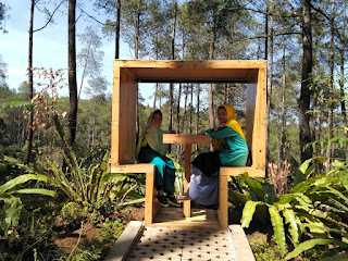 Pengalaman Seru berwisata alam di Orchid Forest Cikole Lembang Bandung