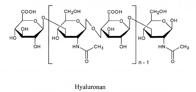 Cấu trúc một phân từ đường Hyaluronan