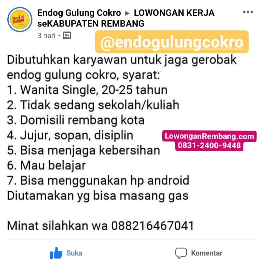 CEPAT TUTUP Lowongan Kerja Endog Gulung Rembang Tanpa Syarat Pendidikan, Tanpa Berkas Lamaran Kerja Cukup Chat WhatsApp