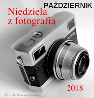 http://misiowyzakatek.blogspot.com/2018/10/niedziela-z-fotografia-pazdziernik.html