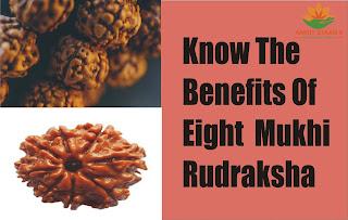 Know the Benefits Of Eight Mukhi Rudraksha
