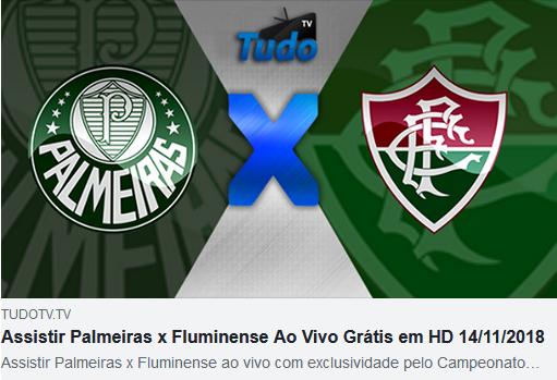 Assistir Palmeiras x Fluminense Ao Vivo Grátis em HD 14/11/2018  (TV Tudo)