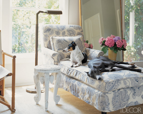 Hydrangea Hill Cottage French Country Decorating: Hydrangea Hill Cottage: Doggie Decor....um?
