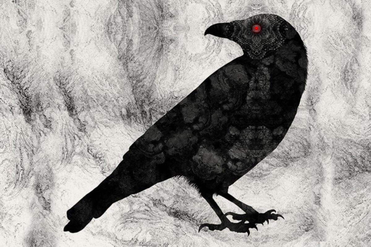 Ilustrasi Hantu Burung Gagak mata Merah
