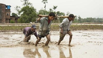 Peluang Sampingan di Desa yang Paling Gampang untuk Dilakukan