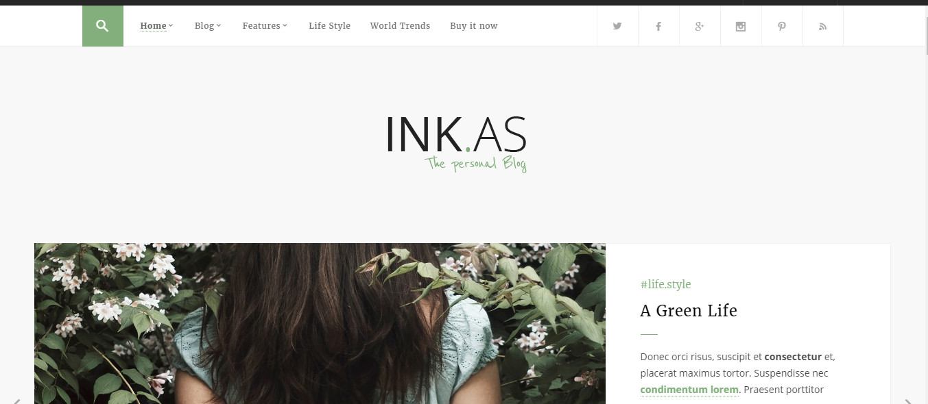 inkAs-perfect wp theme for personal blog