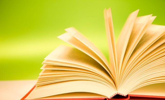 Macam-Macam Unsur Intrinsik dalam Novel (Lengkap)