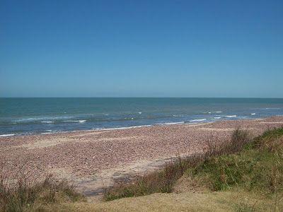 Playa. Costa con piedras y el mar en calma