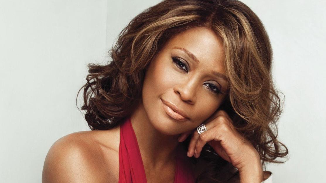 """""""O legado da Whitney e seus fãs devotos merecem perfeição"""", disseram em comunicado."""