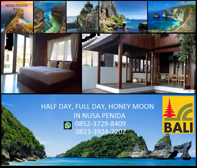BEST HALF DAY TOURS BALI