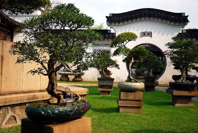 Bonsai Garden in Singapore