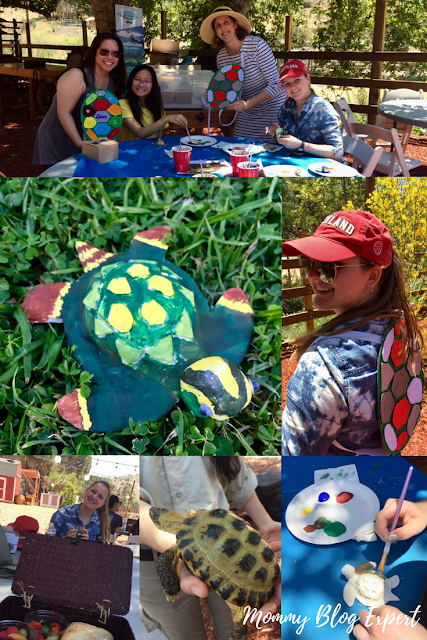 Turtle Tale DIY Kids Crafts