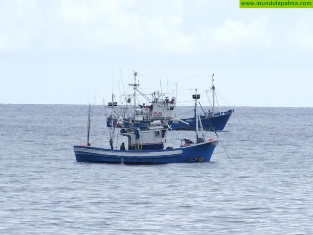 El Gobierno de Canarias formaliza la exención de las tasas a los pescadores por su actividad en los puertos de la CCAA