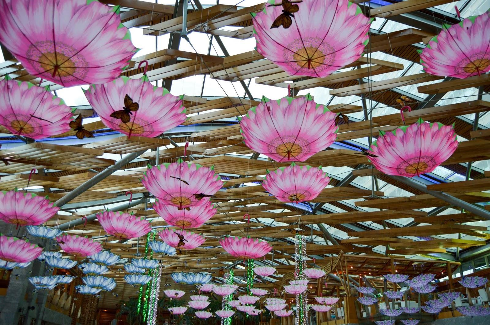 Beautiful Pink Umbrella Wallpapers - Free Stock Photos - Free Images - Free Wallpapers - Free Photos