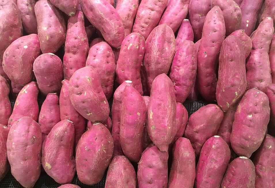 Sweet Potato Diet plan