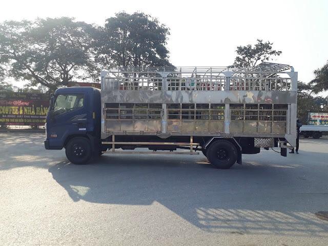 Hyundai Ex8 gắn bửng nâng hạ chở gia súc