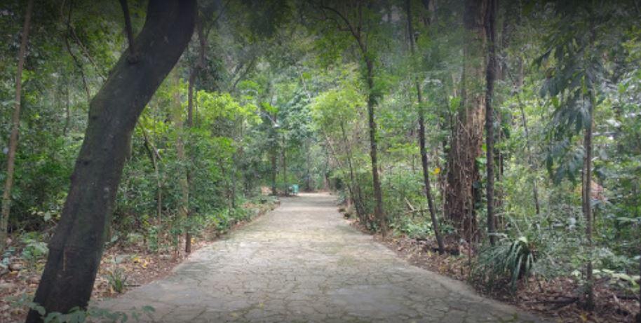 Bosque dos Alemães
