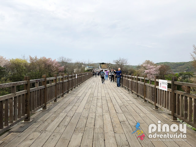 Experiencing a Korean DMZ Tour - Korean Travel Blog