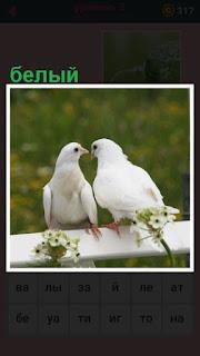651 слов на перилах сидят два белых голубя вместе 3 уровень