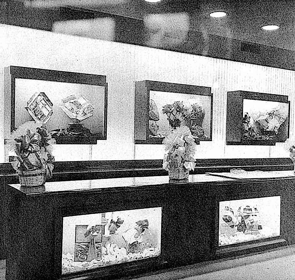 a fancy candy store in 1958