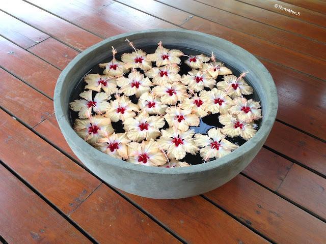 fleurs prospérité bassine d'eau à l'entrée des maisons Sri-lanka