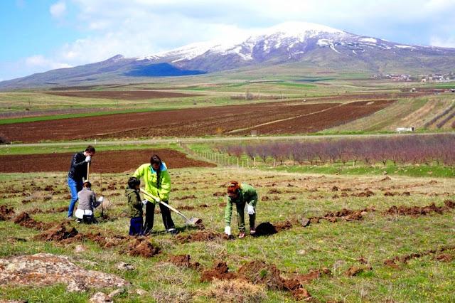 Desarrollo de la agricultura orgánica en Armenia