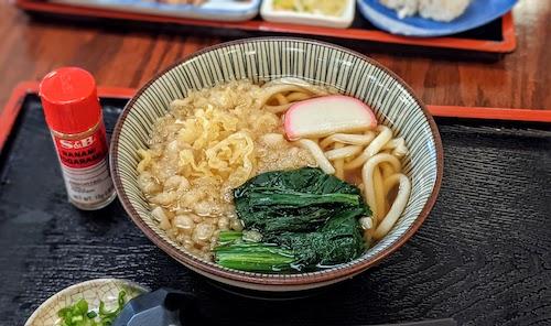 Tanuki udon served hot