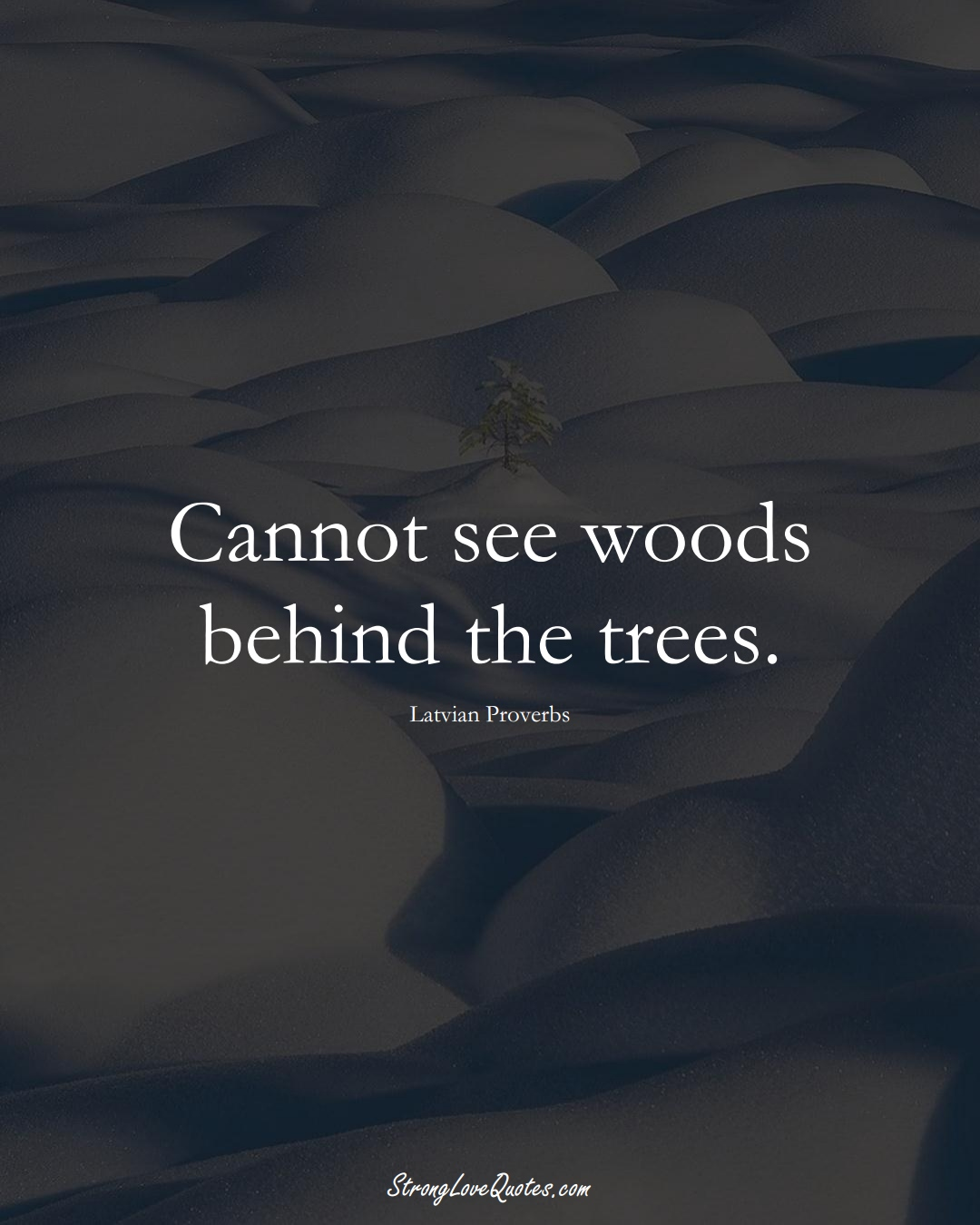 Cannot see woods behind the trees. (Latvian Sayings);  #EuropeanSayings
