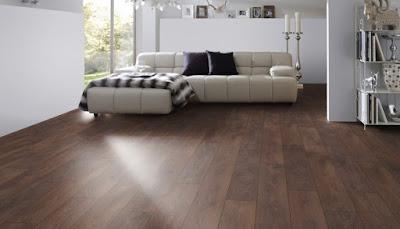 Phương pháp phòng chống và xử lý khi sàn gỗ bị mối mọt