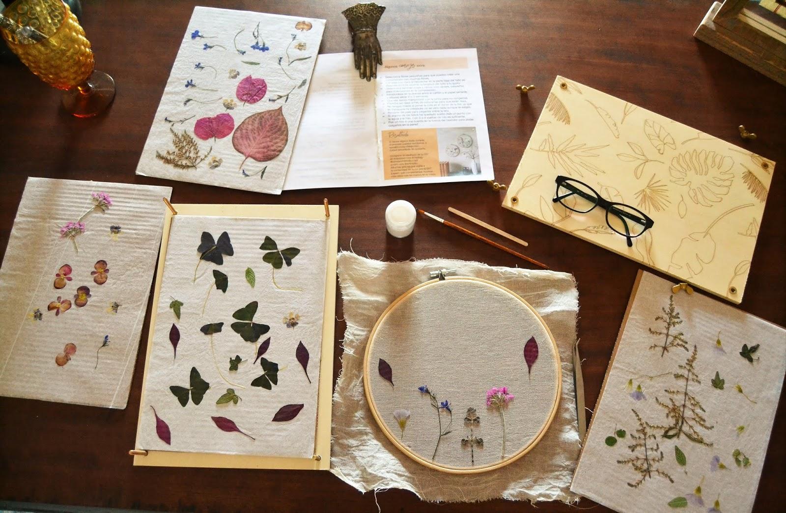 Diy flores y hojas prensadas en bastidor, opinión del primer archikit de Home Archilab