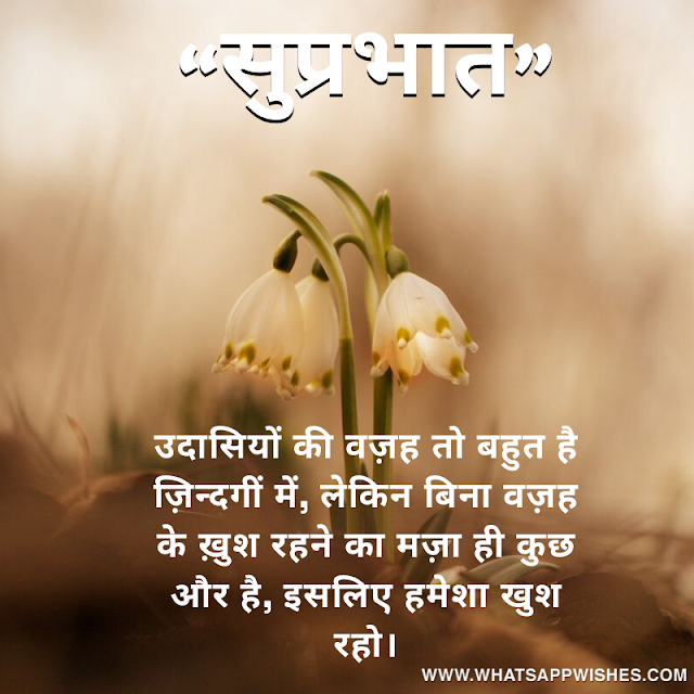 Phoolon Par Shayari Wallpaper Picture Good Morning