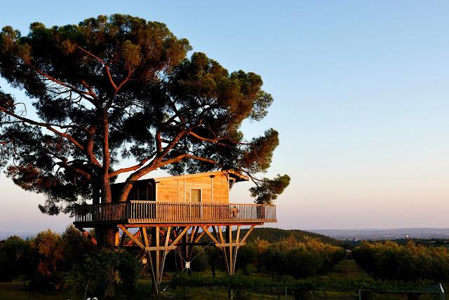 Dormire in una casa sull'albero italia