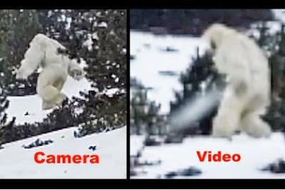 Spanish Yeti Photo hoax