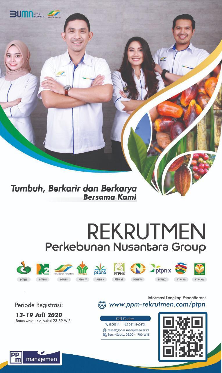 Rekrutmen Calon Karyawan Perkebunan Nusantara Group