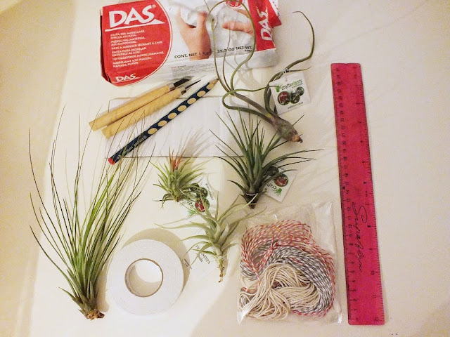 geometrical diy planters air plants