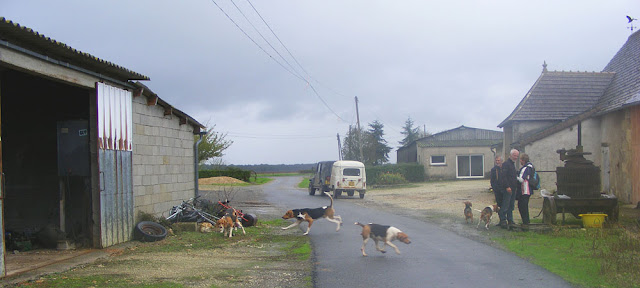 Release the hounds! Indre et Loire, France. Photographed by Susan Walter. Tour the   Loire Valley with a classic car and a private guide.