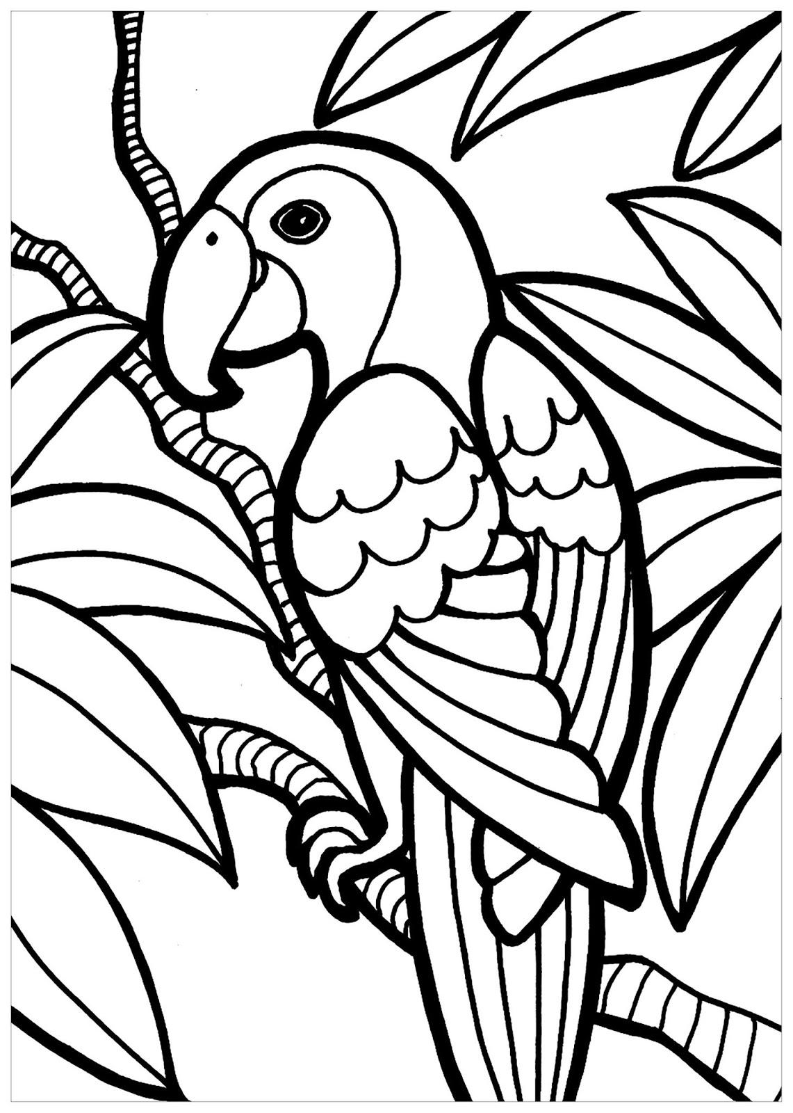 Tranh tô màu con vẹt và lá cây