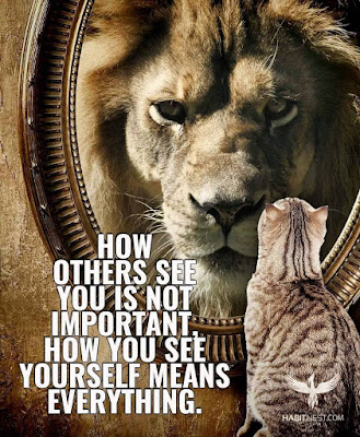 Motivational Quotes With Lion Pictures