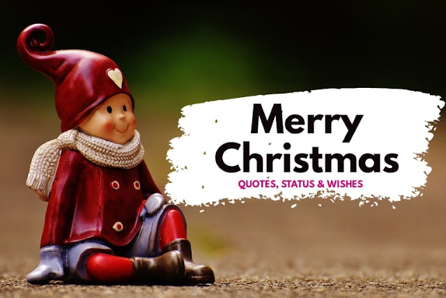 Happy Christmas Quotes, Status, Wishes, Message